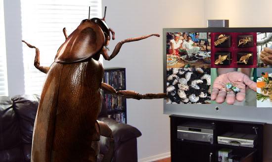 Cuca TV